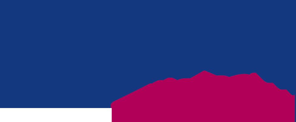 Wie Daham - Karriere